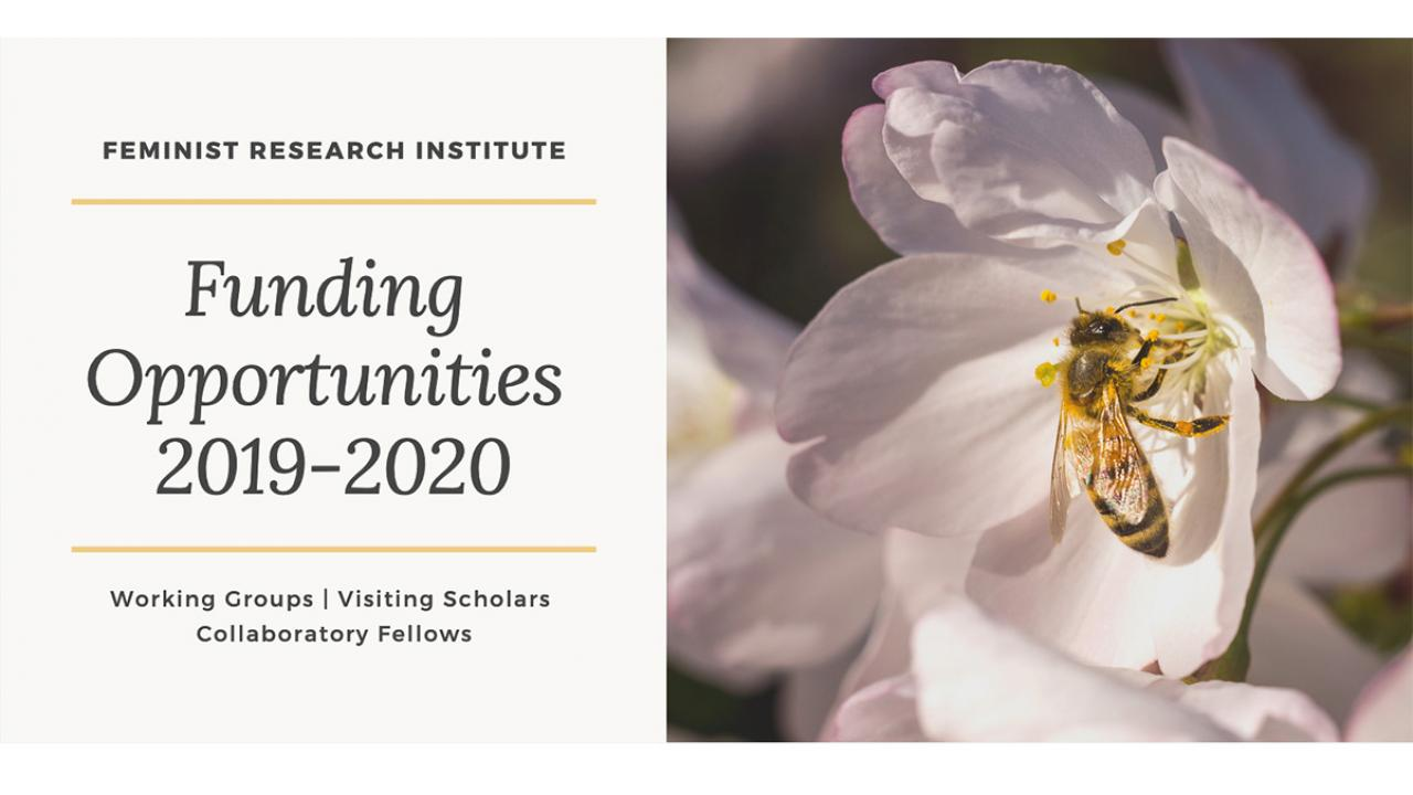 Multiple Funding Opportunities with the Feminist Research Institute (image of bee in cherry blossom)