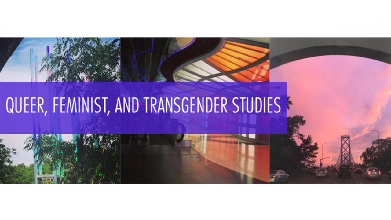 Queer, Feminist and Trans Research Cluster Meeting banner